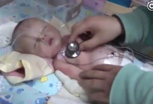 Perro rescata a bebé enterrado vivo [Increible Historia]