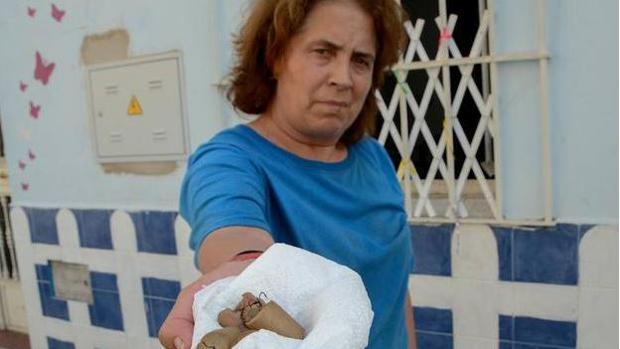 Perro muere al comer Salchichas con Clavos y Anzuelos