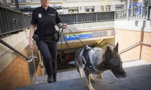 Agencia EFE pixela a un perro policía
