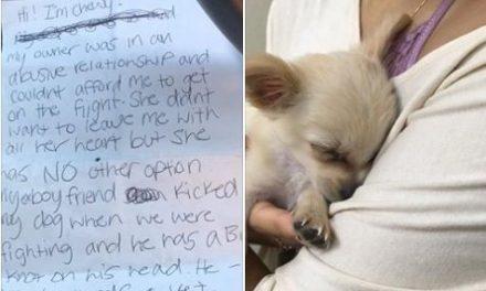 Mujer maltratada abandona Chihuahua en el Aeropuerto