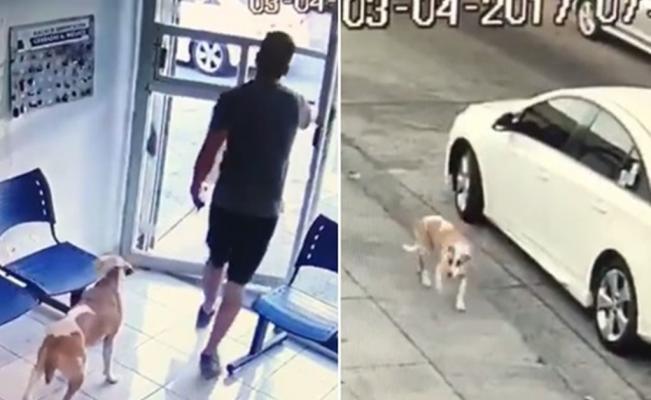 Abandona a su perro en plena calle [VIDEO]
