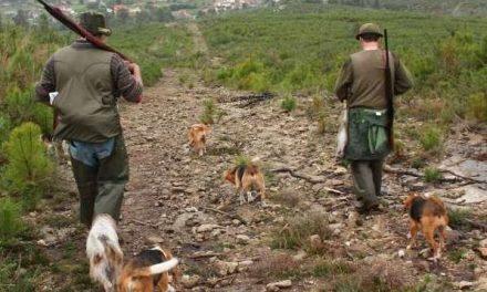 Acusado de matar a un perro Absuelto por la Audiencia