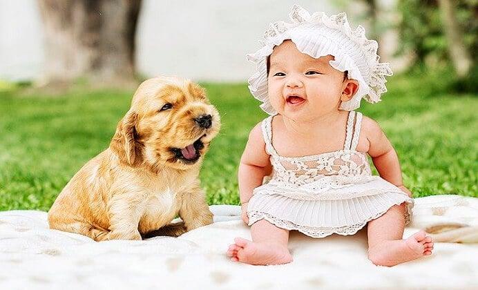 Guía de qué hacer con tu perro si nace un bebé