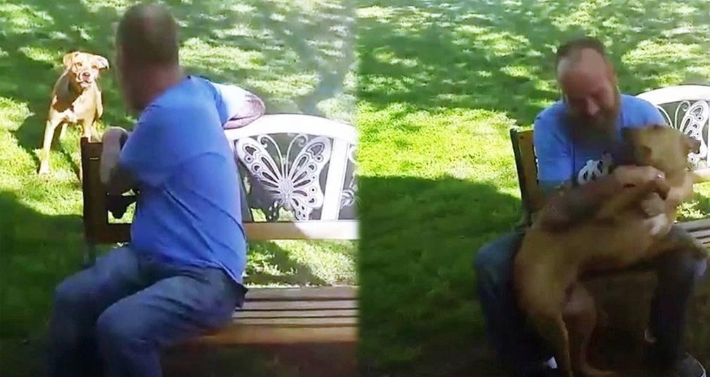 [VIDEO] Adelgaza 23 kg y su perro no le reconoce (hasta que lo olfatea)
