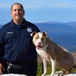Primer Pit Bull policía de New York