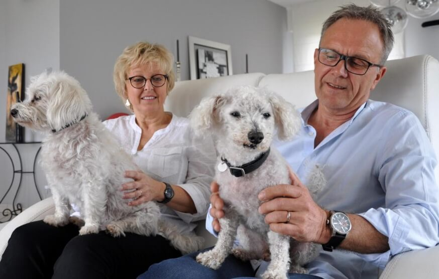 Familia francesa encuentra a su perro 11 años después de haberse extraviado