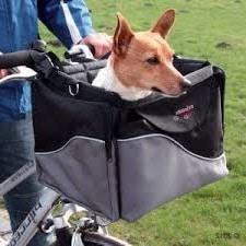 cesta perro bicicleta