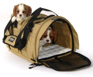 transportin para viajar con perros pequeños
